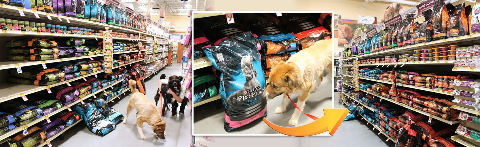 Purina-ProPlan-Shop-Petsmart