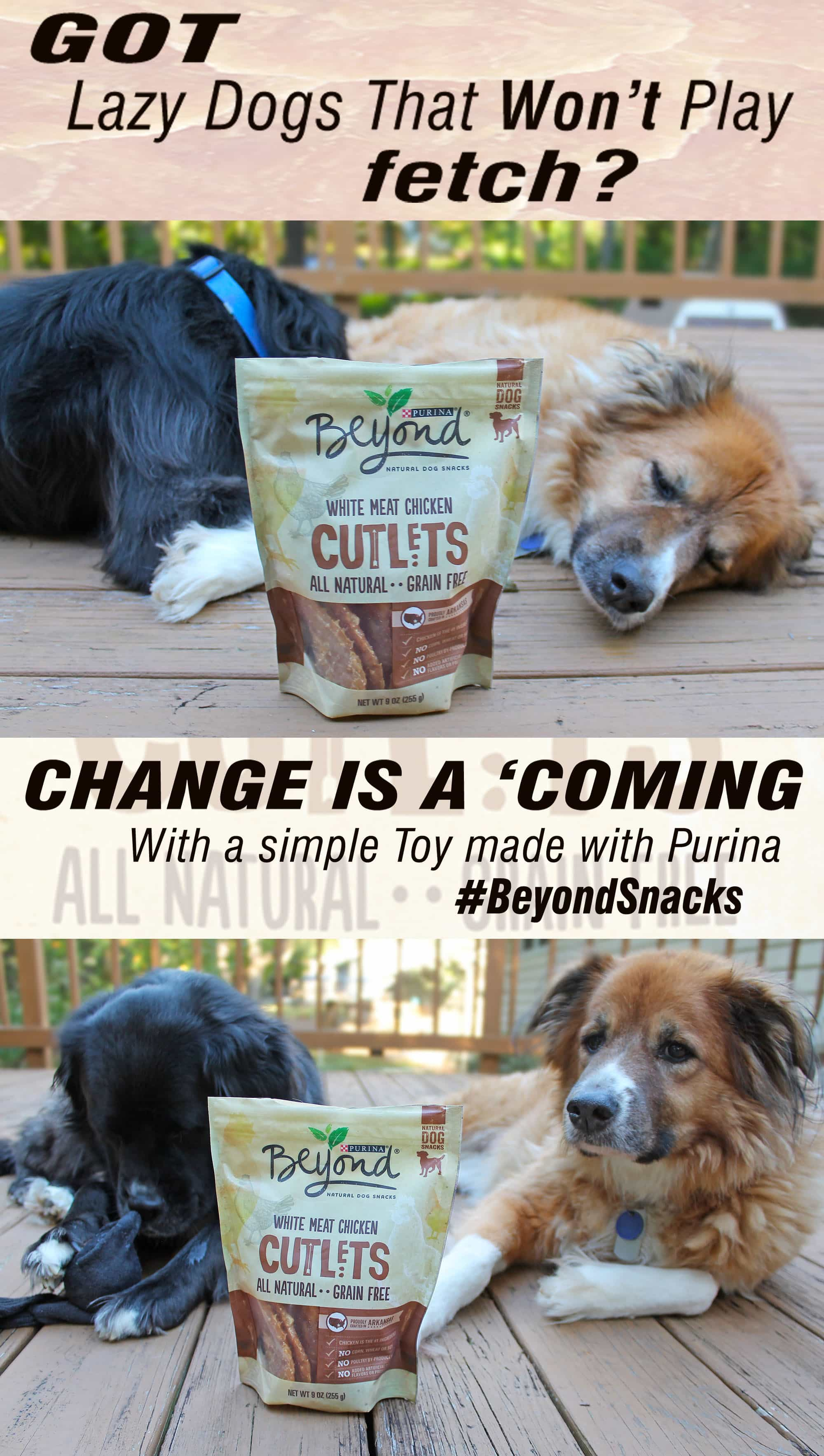 Lazy Dogs Before & After #BeyondSnacks inspired toys ggnoads