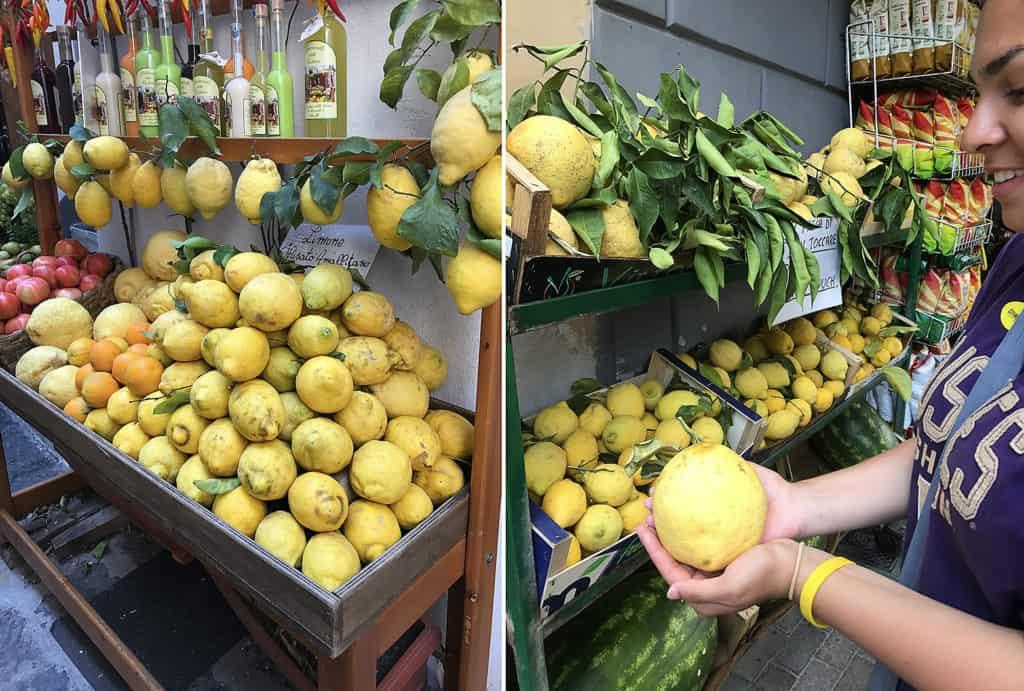 St. Teresa lemons aka Sorrento Lemons