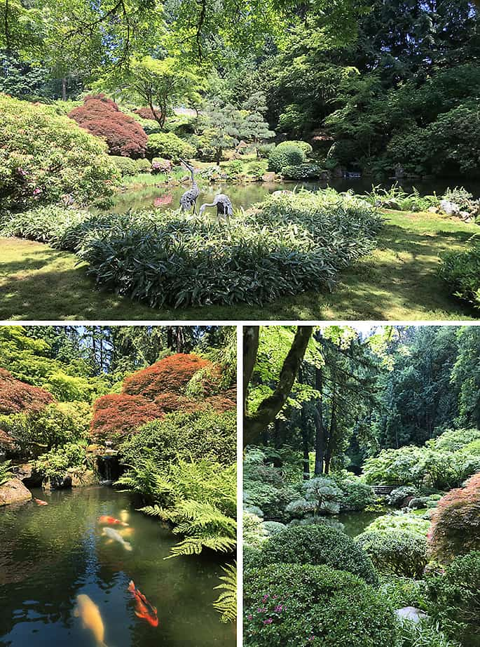 Portland Japanese Garden Photo