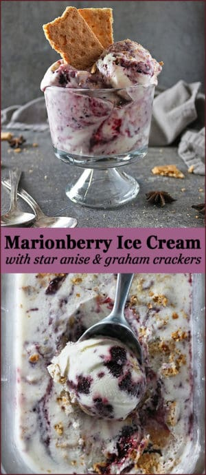Photo of Marionberry Ice Cream with Star Anise & Graham Crackers