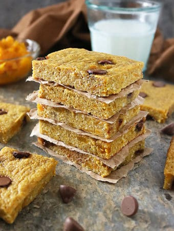 Gluten Free Squash Chocolate Chip Bars Photo