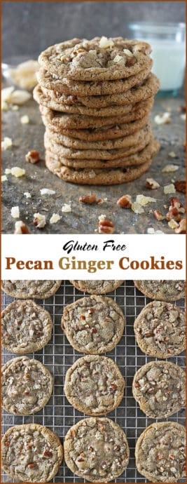 #ad Gluten Free Pecan Ginger Cookies Prepped with FoodSaver® FM5330 Vacuum Sealing System And FoodSaver® 6 pk Heat Seal Rolls #PrepNowSavorLater #StockPrepWin Image