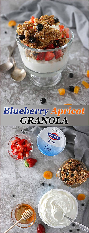 Blueberry Apricot Granola