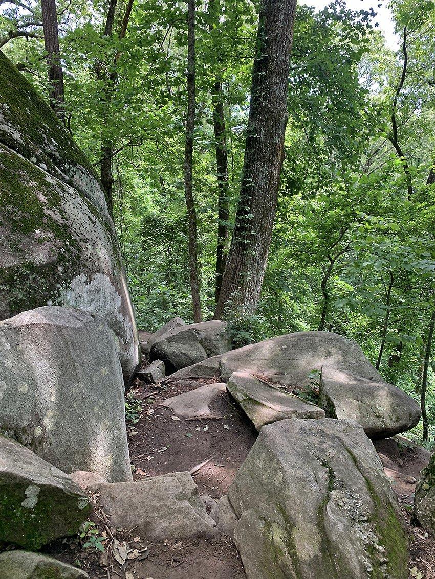 Climbing Mt Yonah
