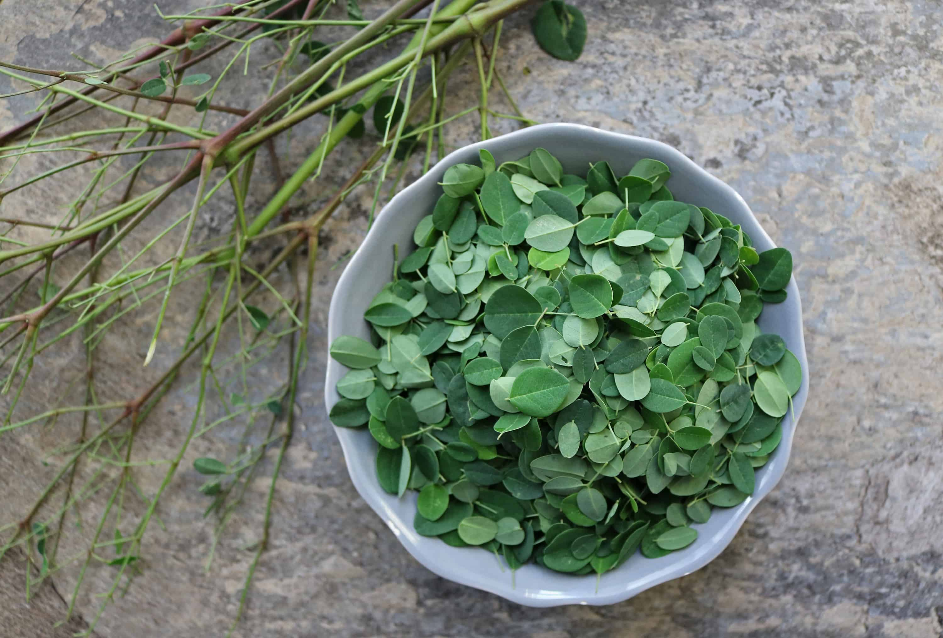 Using Fresh Moringa Leaves by placing the leaves in a bowl and discarding the stems.