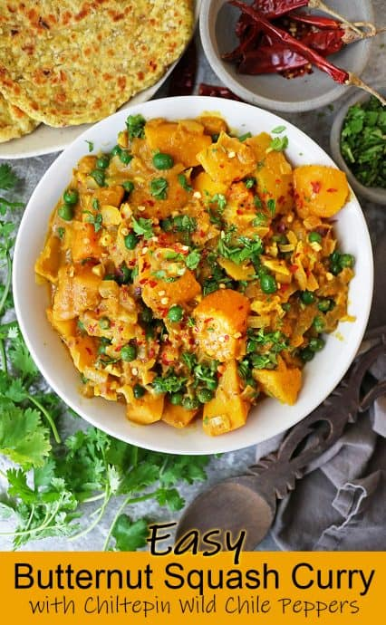 Frozen butternut squash and chiltepin peppers unite in a deliciously spiced and aromatic coconut-milk based sauce in this spicy, easy, vegan butternut squash curry.