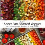 This easy sheet pan roasted veggies recipe includes a rainbow of veggies that are slathered with a delicious coriander-turmeric marinade.